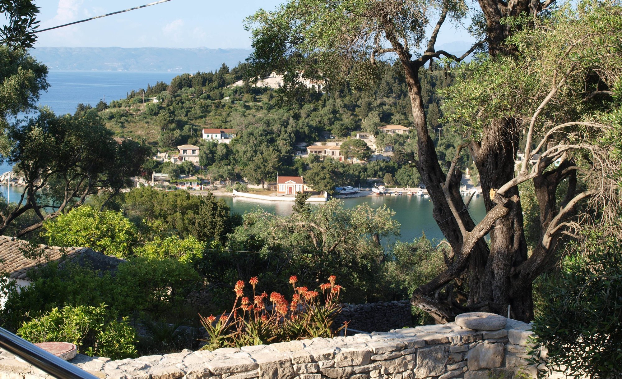 Elissa's view over Lakka Bay